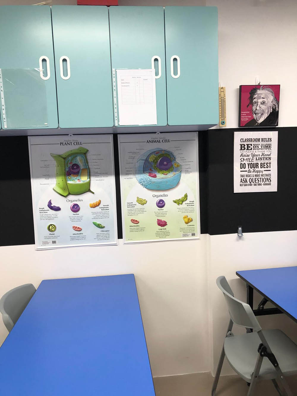 Magnetic Wall Display Posters in Classroom