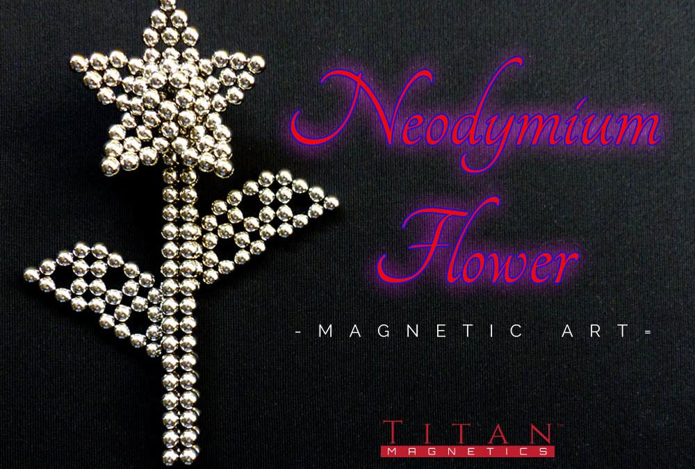 Neodymium Flower