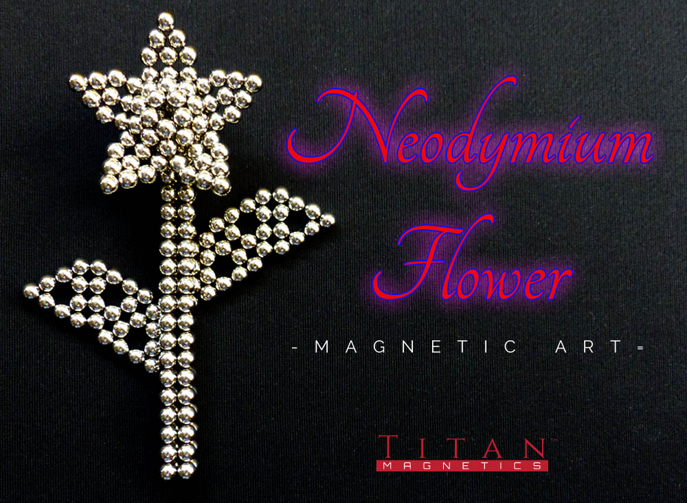 Neodymium Flower - Magnetic Art