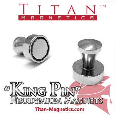 Steel case Pin Neodymium Magnets 2pcs King Pin